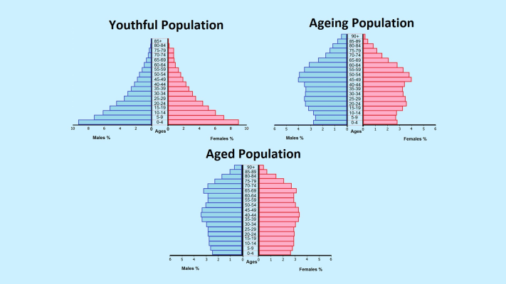 Course image for 202 Population Composition